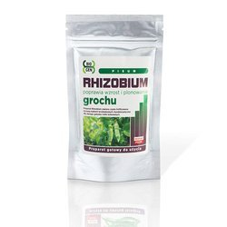 Rhizobium grochu (Rhizobium Pisum)  100g