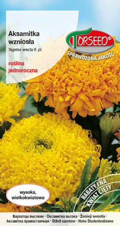 Aksamitka wielkokwiatowa wysoka - mieszanka kolorów 1 g