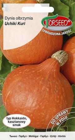 Dynia olbrzymia Uchiki Kuri 2 g